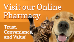 Online Pharmacy, Pet Pharmacy, flea and tick, heartworm, Frontline, Sentinel, Heartgard, Bravecto